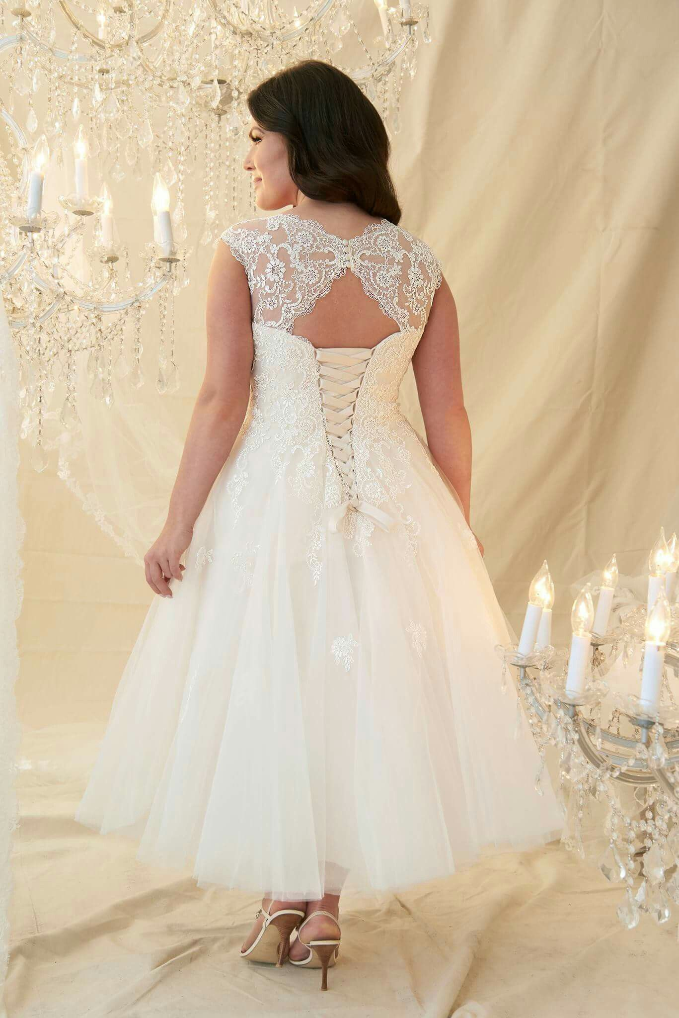 Callista Bridal Gown Style Paolo Plus Size In 2019 Tea Length