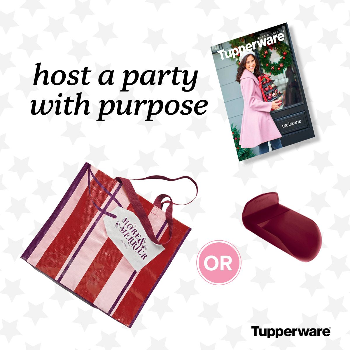 Host a party and get Tupperware products FREE! http