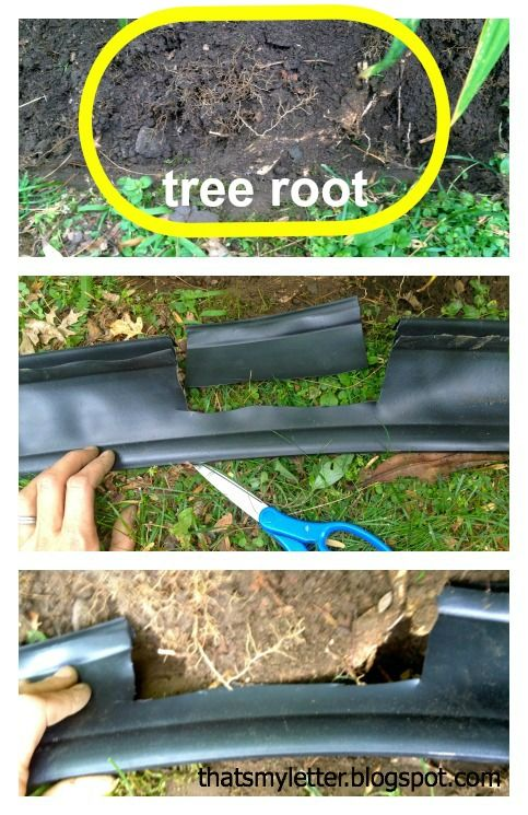 How To Install Landscape Bed Black Edging Landscaping Around Trees Tree Roots Landscape Trees