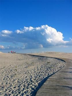 Assateague National Seashore, Virginia: Four wheelers and surf fishermen can ride side by side with the famous wild horses. Like other Atlantic beaches, the surf is kind to swimmers. Maryland's Ocean City is a short drive to the North for plenty of food and fun for adults and kids.
