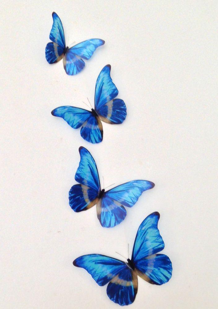 4 Royal Blue Tropical 3D Butterflies Wedding Mirror Wall ...