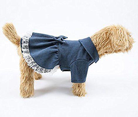 Amazon.com  Sweet Pet Denim Skirt Cute Dog Costumes Spring Jean Lace Dress for & Amazon.com : Sweet Pet Denim Skirt Cute Dog Costumes Spring Jean ...