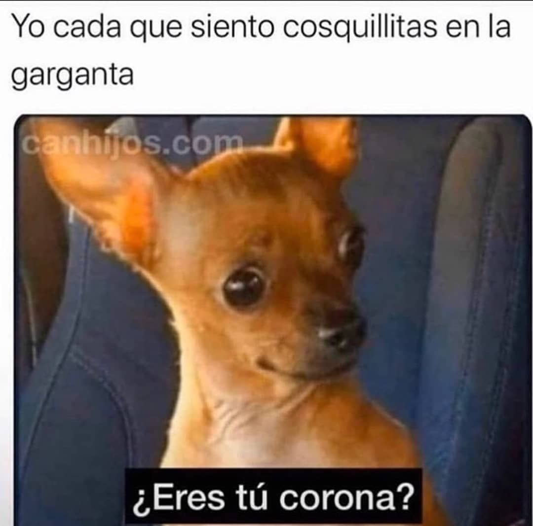 Pin By Dmtzf On Memes In 2020 Funny Af Memes Funny Memes Funny Spanish Memes