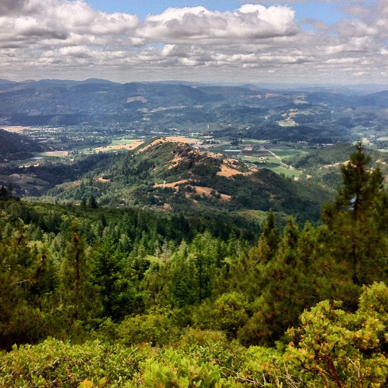Mount Saint Helena Trail State parks, California, St helena