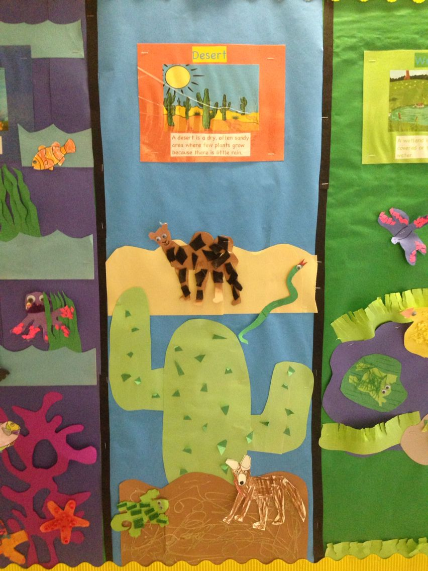 Habitat Bulletin Board Desert Section Kindness to