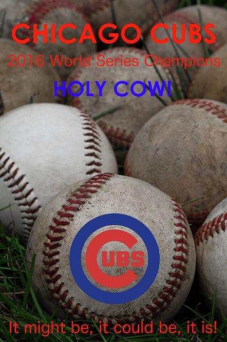 World Series Champions - Chicago Cubs slogan poster. It might be, it could be, it is! #Cubs #ChicagoCubs