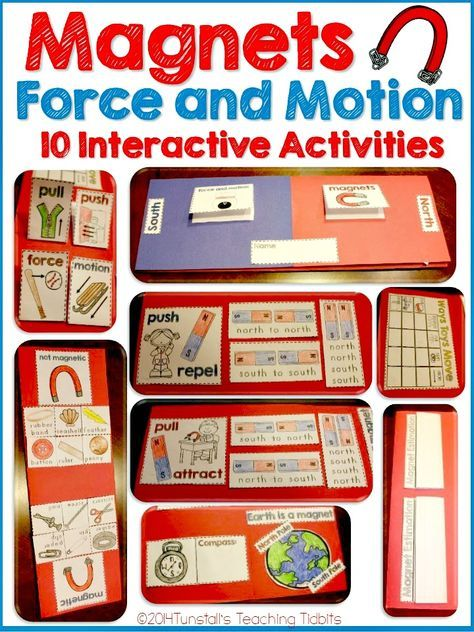 Photo of Magnets, Force, and Motion – Tunstall's Teaching Tidbits