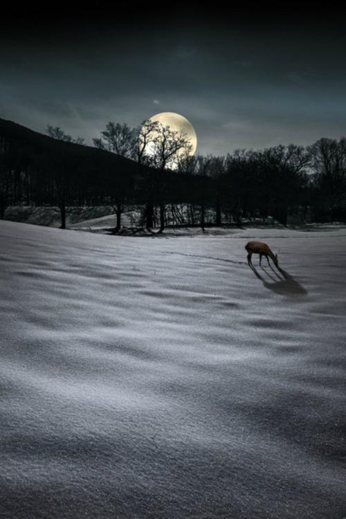 Pin By Luz Davila On Hermosa Luna Beautiful Moon Beautiful Nature Good Night Moon
