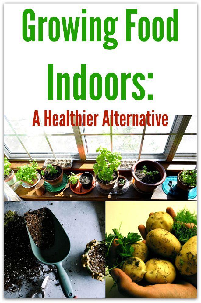 Growing Food Indoors A Healthier Alternative Indoor 400 x 300