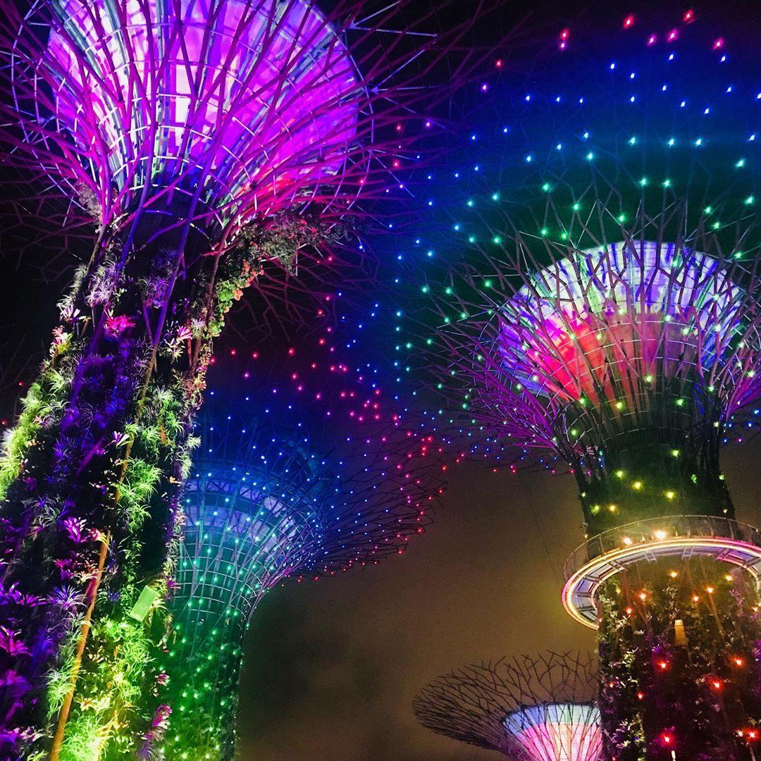 a5a23533d8a06081991d690b97843d48 - Gardens By The Bay Christmas Light Show
