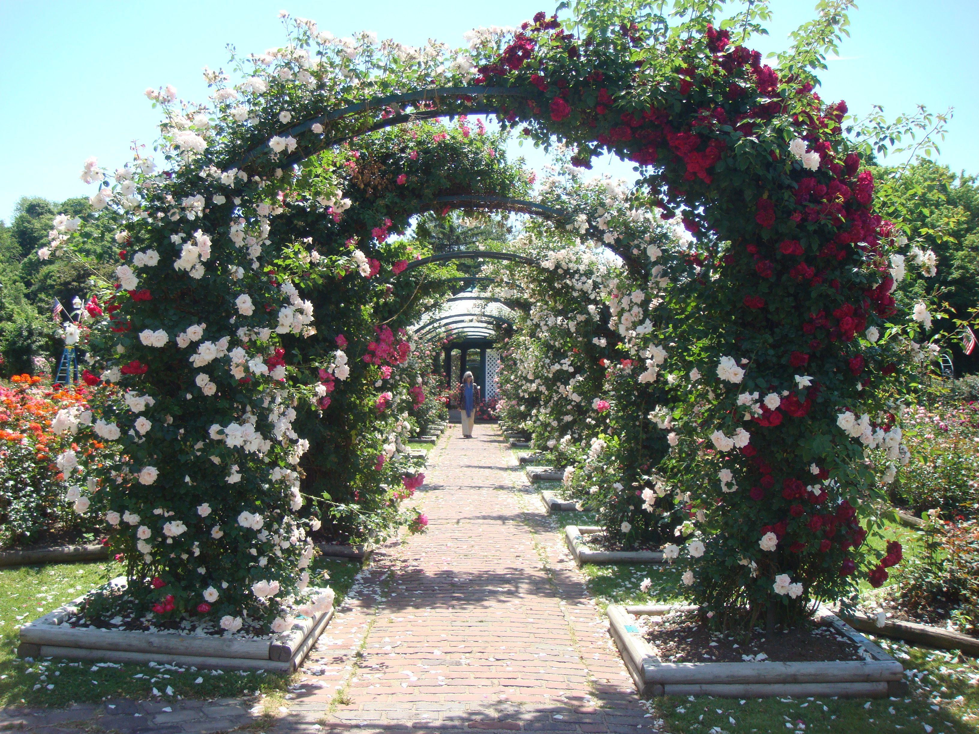 The Rose Garden Thornden Park Favorite Places Wedding Venues Places