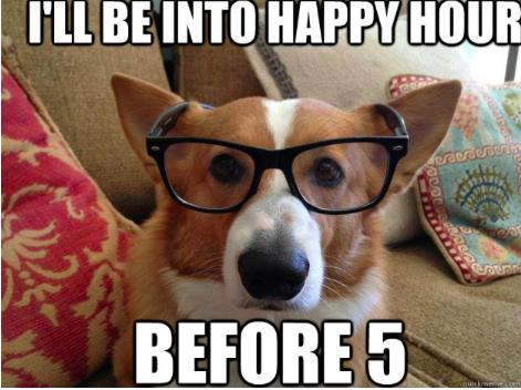 Happy Hour Meme Corgi Corgi Memes Crazy Corgi
