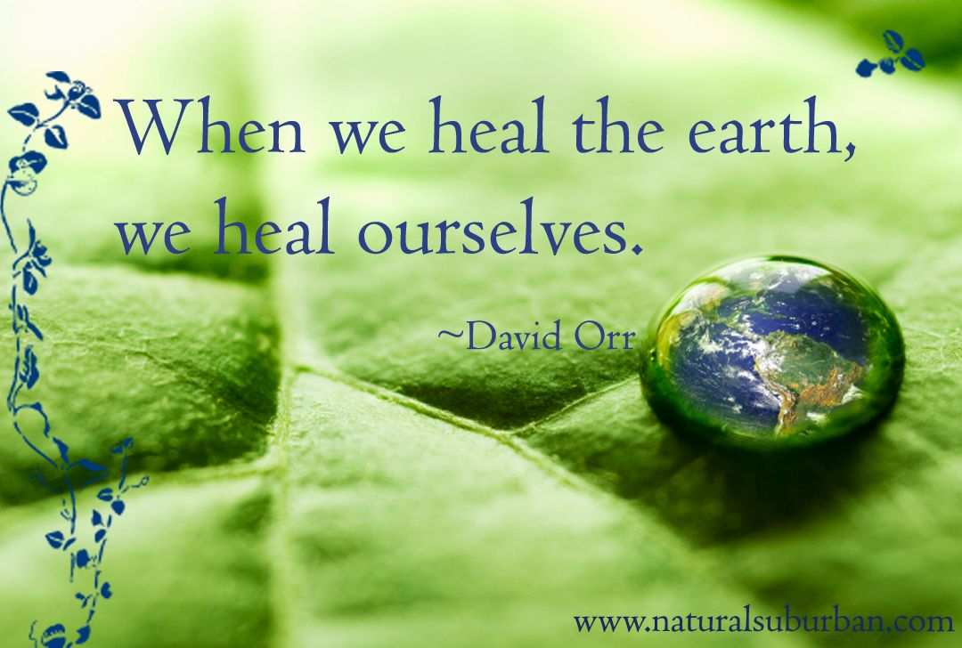 Healing Earth Environment Quotes Environmental Quotes Earth Quotes
