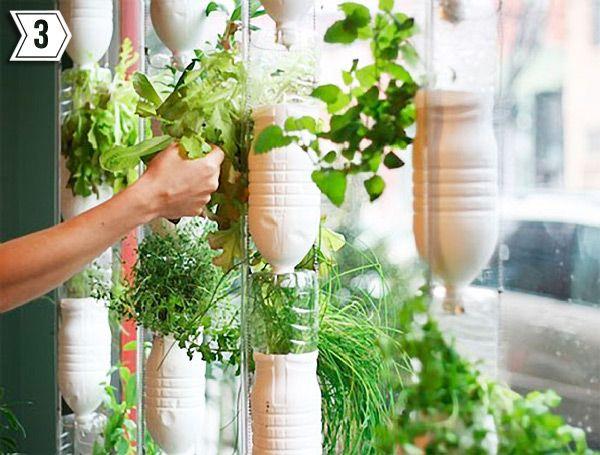 Hydroponic Window Garden Diy   Google It. I Love The Idea Of Recycling  Bottles +