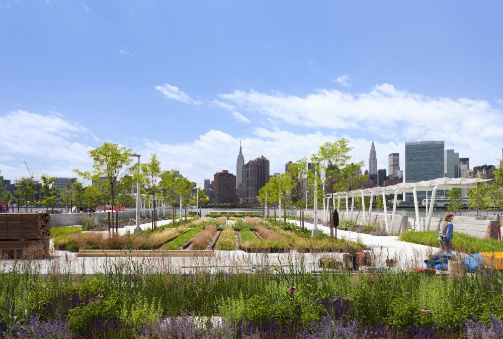 Gallery Of Hunter S Point South Waterfront Park Thomas Balsley Associates Weiss Manfredi 3 Landscape Architecture Design Landscape Architecture Waterfront