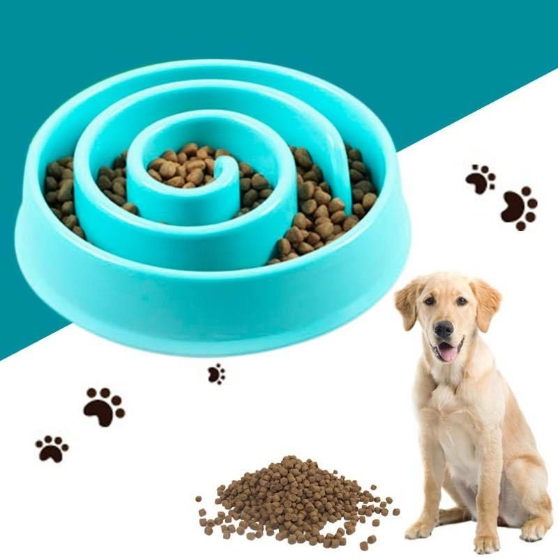 Slow Food Bowl For Cats Dogs Dog Feeding Bowls Food Bowl
