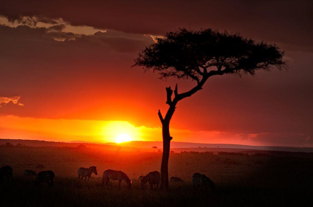 Afrika Landschaft Sonnenuntergang Afrika Reisefuhrer Mit