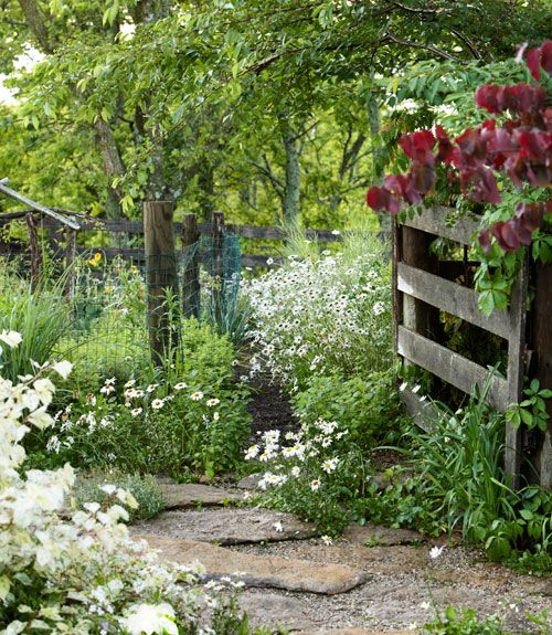 50+ Fresh New Ways To Landscape Your Yard | Gardens, Backyards And