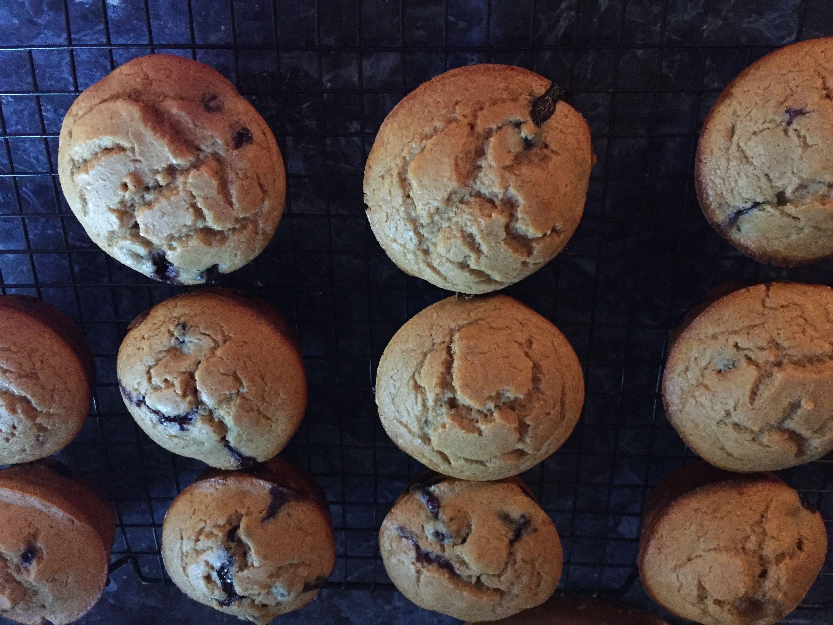 Blueberry protein muffins 2 cups kodiak cake mix 1 scoop