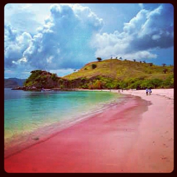 Just Beautiful… #PinkSandBeach #Indonesia #GodsCreation #GodsMasterpiece • #Beaches #CLBVision