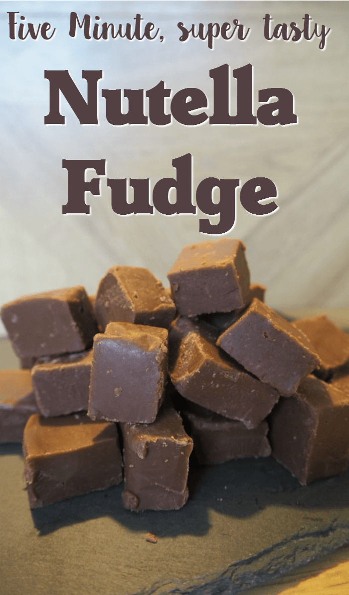 5 Minute Nutella Fudge The Diary Of A Frugal Family Fudge Recipes Nutella Fudge Fantastic Fudge Recipe