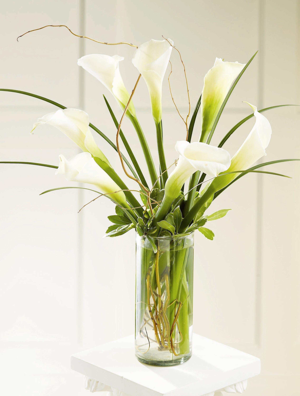 Galeria Floral Alcatraces Lily vases