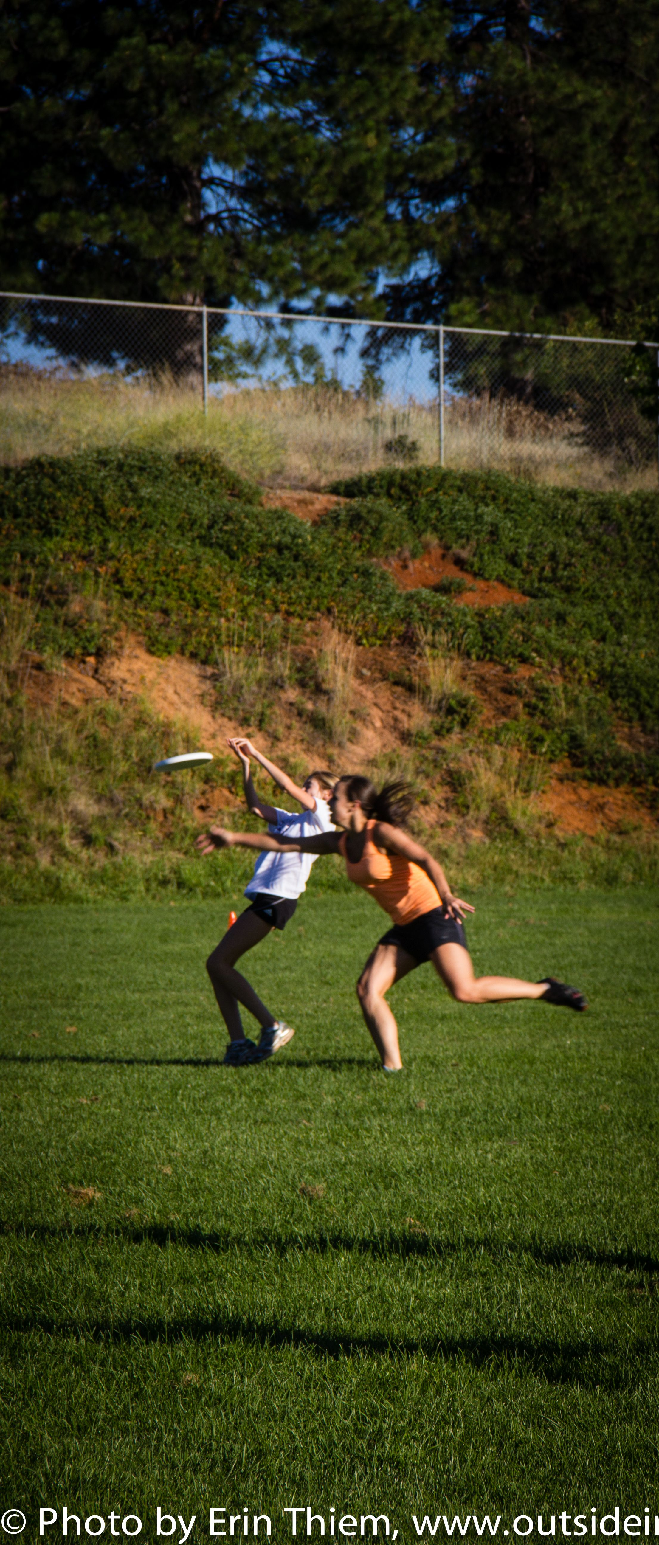 gold country ultimate frisbee league summer games monday nights