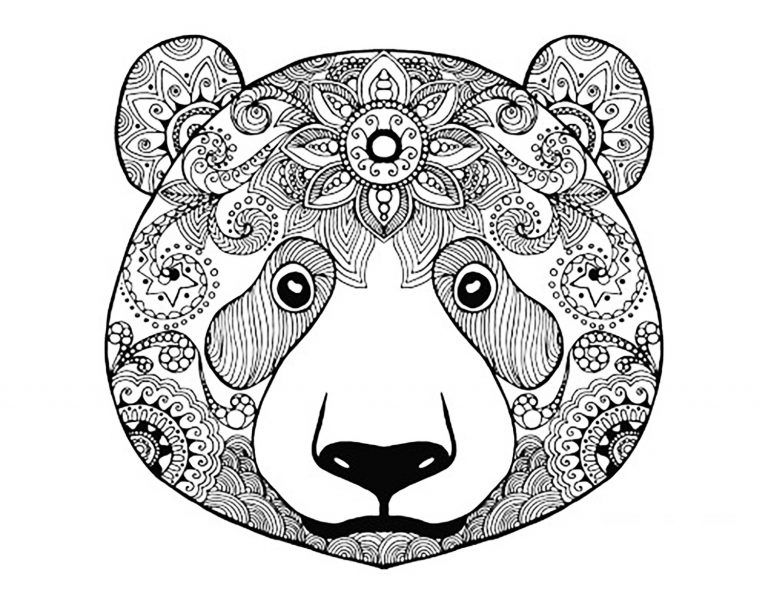 Adult Coloring Pages Animals Dragon Dinosaur Bear Coloring