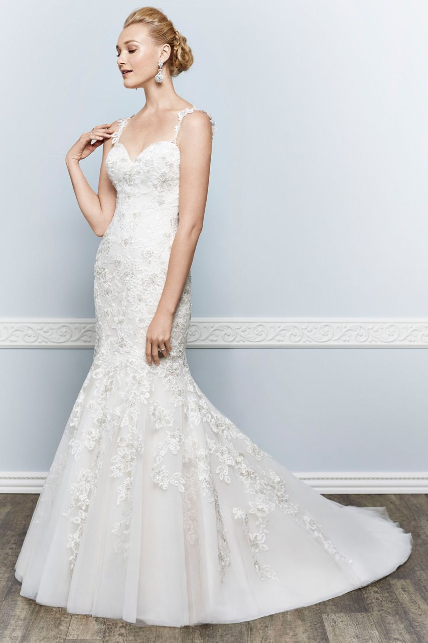 Wedding gown gallery gowns wedding dress and wedding