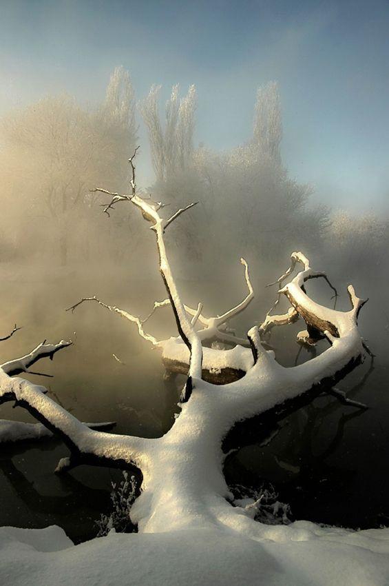 35PHOTO - фёдор - морозным утром.    Fedor