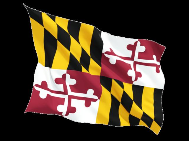 Pin By Dan Graham On Tattoos Maryland Flag Flag Flag Icon