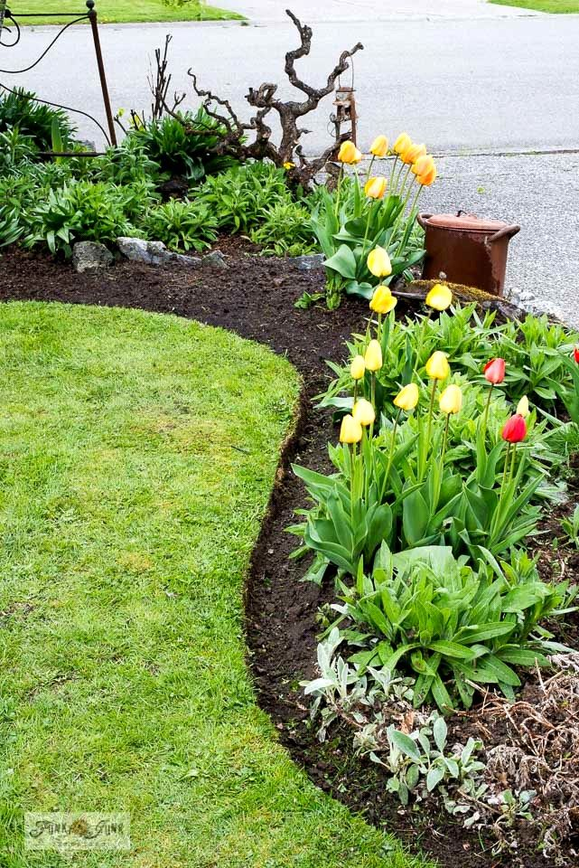 How to recut flowerbed edges like a pro part 2 with
