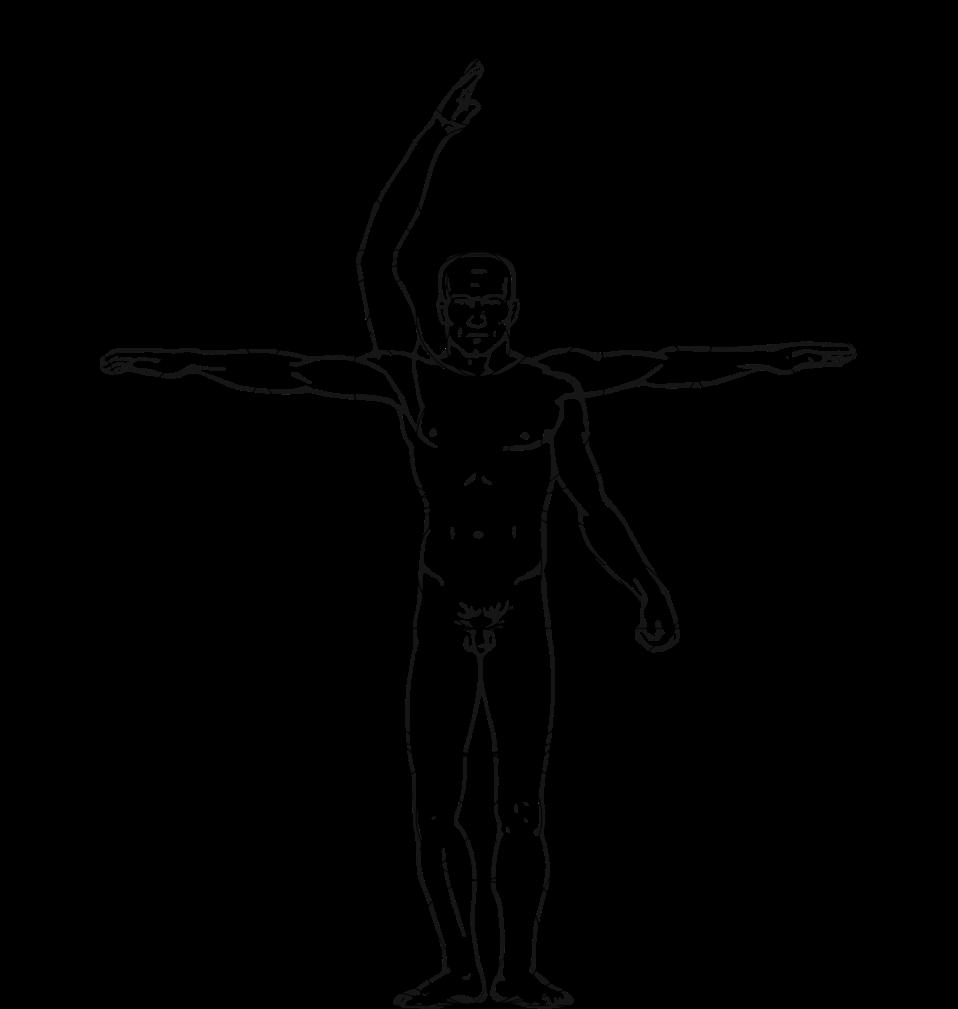 Vitruvian Man Outline 760x800 Png Download Vitruvian Man City Outline Outline