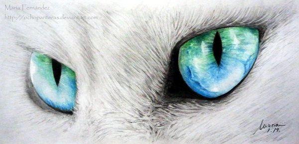 Cat by ochopanteras.deviantart.com on @deviantART