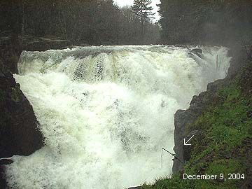 These Are The Falls City Falls In Oregon The Falls City Alliance Is A Non Profit That Saved The Falls For Public En With Images Oregon Nature Falls City Places To Visit