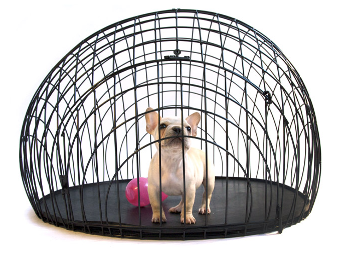 The 11 000 Gold Plated Dog Crate And Less Expensive Versions For The Rest Of Us Dog Crate Dog Crates For Sale Stylish Dogs