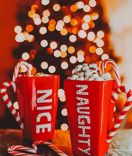 christmasmood, christmasjoy,christmasday, christmasparty,christmasgifts, christmascheer,christmastime ,christmastree,Christmas,howto,christmas, christmasdiy ,diy ,artsandcrafts, christmascrafts ,doityourself ,christmasideas, New Year, Lightroom, vsco, free lightroom, free lightroom mobile, instagram, btanding, adobe lightroom,photo editing, bright, vintage, aesthetic, portrait, best presets, summer, mint preset, white preset, cream preset, coffee preset, instagram preset, iphone preset.