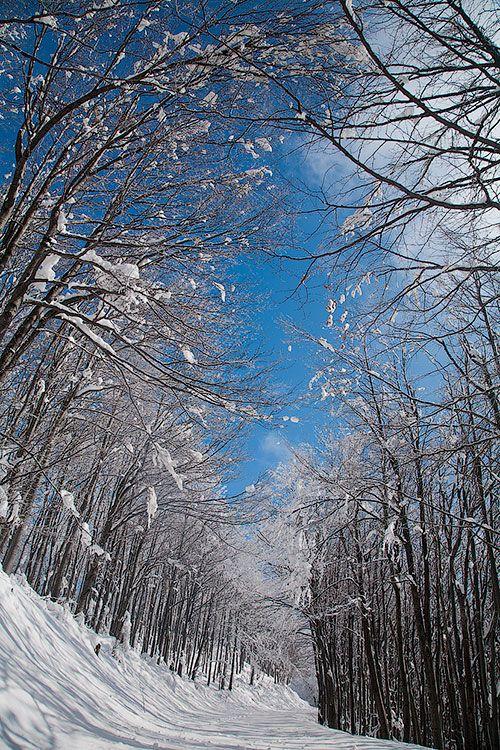 Balkan Mountains, Bulgaria,