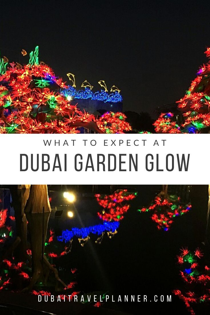 Experience the magical seasonal light show spectacular of