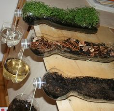 Soil erosion experiment: A very simple experiment that stresses the importance of the vegetation cover of the soil. | found on Lapappadolce