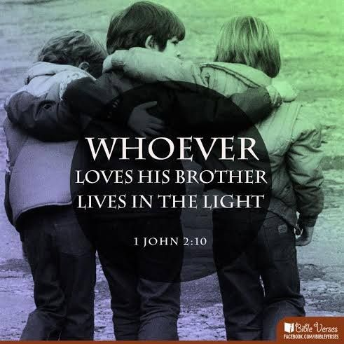 Bible Quotes Brotherly Love From The