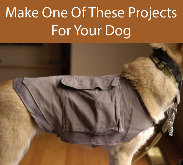 The Ultimate Guide To Dog DIY Projects – Part 4