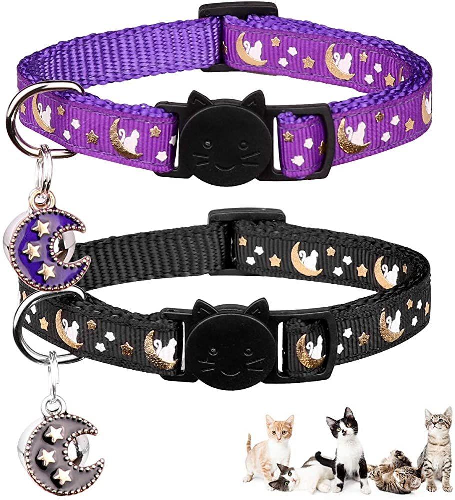 Cat Collar Cat Collar Breakaway Kitten Collar Breakaway Cat Collar Personalized Collar Personalized Collar Designer Cat Collars Breakaway Cat Collars