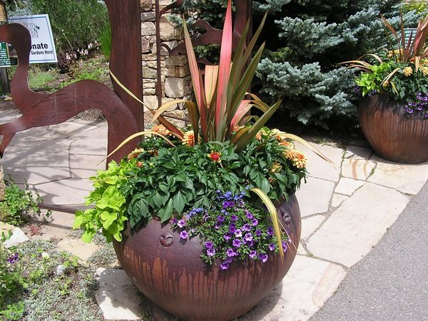 Patio flower pot arrangements beautiful potted plants for Garden design ideas with pots
