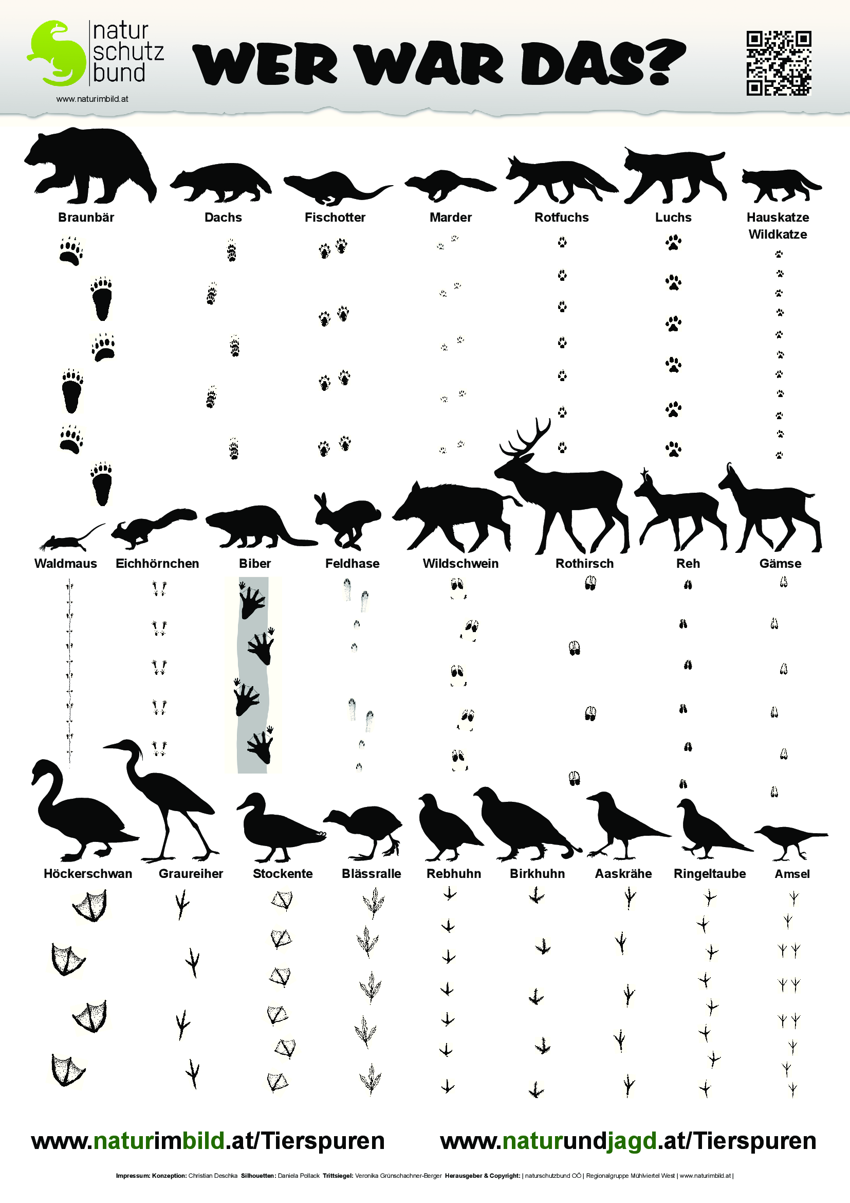 Photo of Animal traces identification sheet, traces of 25 domestic game …