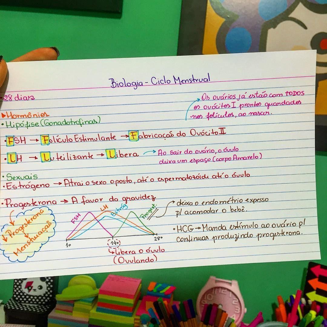 Biologia - Ciclo Menstrual #medicadivabiologia | Estudos | Pinterest ...