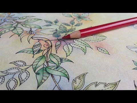 Colouring Secret Garden A Garland In Pastels Color Pencil Art Secret Garden Colouring Johanna Basford Coloring Book