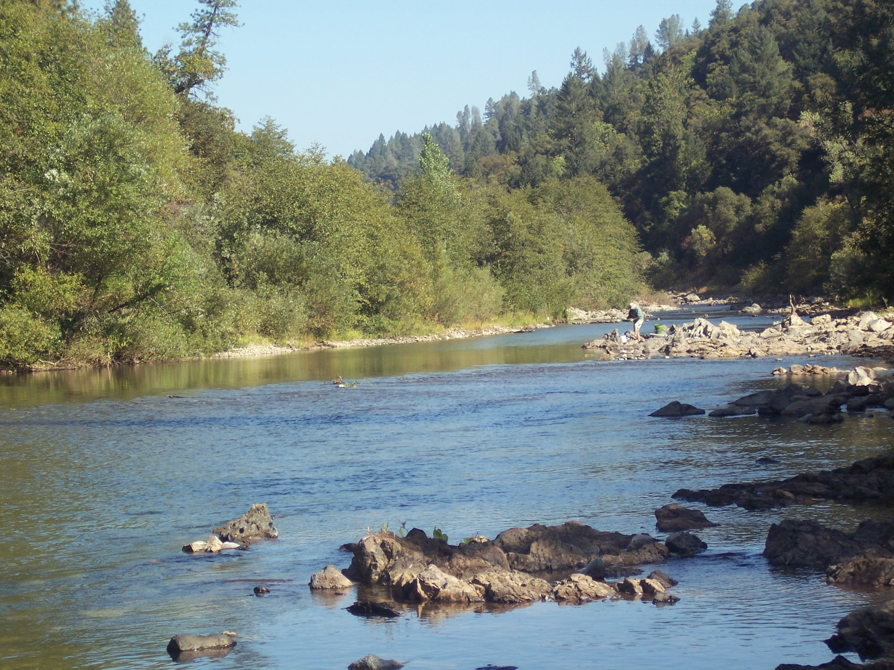 the bear river near colfax california where i pan for gold free