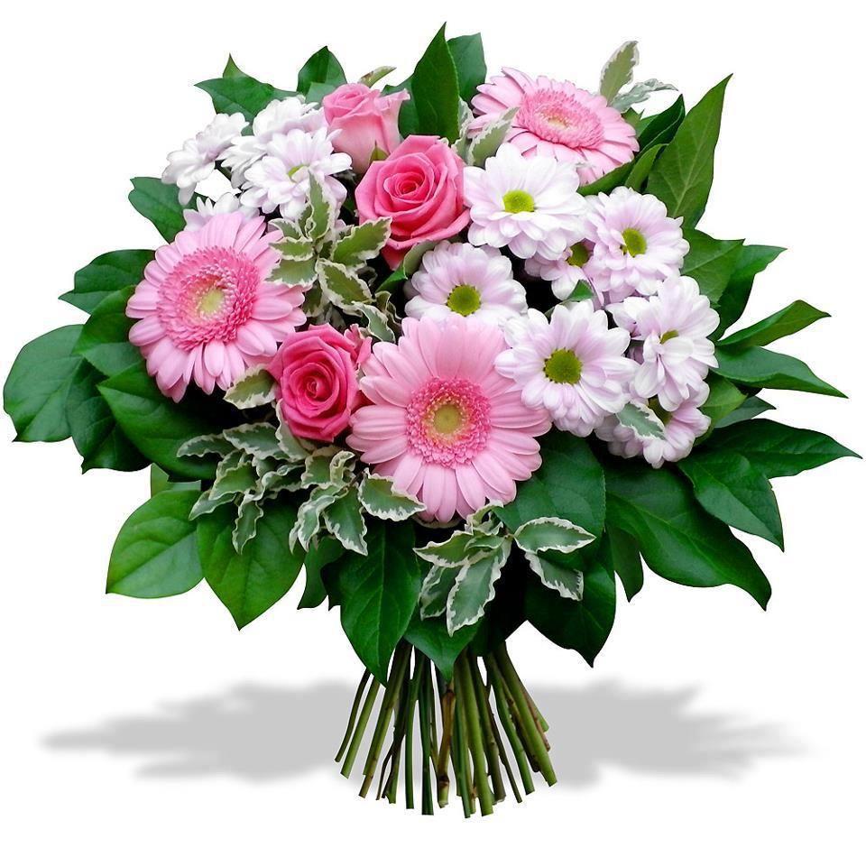 Collection Images : Les plus belles FLEURS DU MONDE : Infos + marccantin.com * Tous les don ...