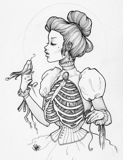Rib Cage Drawing Art : drawing, Picture., Looks, After, Birds, Cage., Victorian, Steampunk, Drawings,, Inspiration